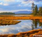 纽约/新泽西出发-缅因州阿卡迪亚国家公园三天之旅